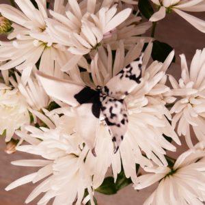 Broche origami en soie Papillon Noir Et Blanc